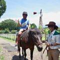 牧場で乗馬体験!竜さんちのふもとっぱらキャンプ日記2018④